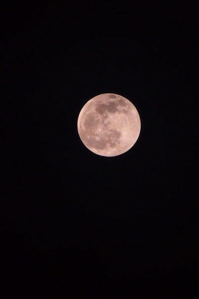 2月獅子座満月遠隔ヒーリング&オーラサポートスプレー